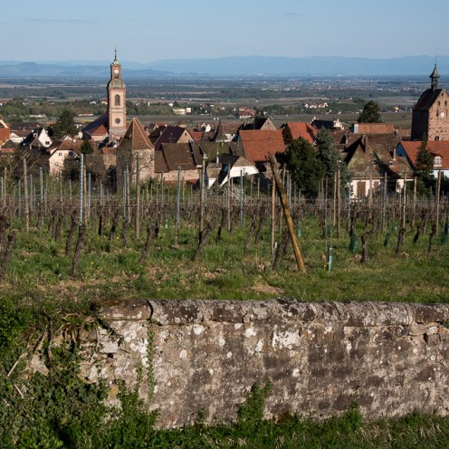 A view of Riquewihr to the east