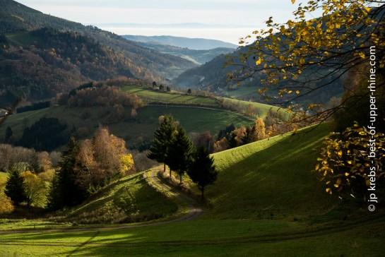 Landscape near Le Bonhomme and Linge in the Vosges