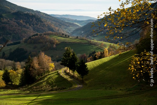 Landscape near Le Bonhomme and Linge in the Vosges