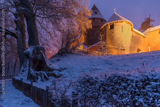 The Haut-Koenigsbourg castle under the snow in January …