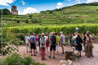 This guided tour of Kaysersberg starts at medieval castle and the steep vineyards of the famous Schlossberg.