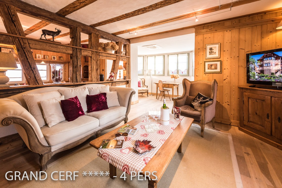The living room of the Alsatian Hart, Outstanding Luxury Gite in Riquewihr in Alsace on the Alsace Wine Route!