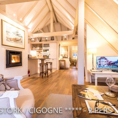 The big living room of the White Stork, spectacular and romantic loft apartment with terrace in Riquewihr in Alsace on the Alsace Wine Route!