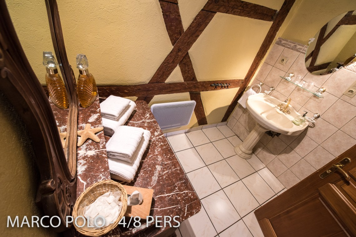 Another bathroom in Marco-Polo, Sumptuous and spacious holiday home in Riquewihr for 6 persons