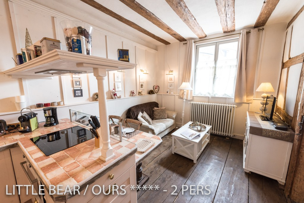 The living room of the Little Bear, romantic and charming apartment for 2 adults in Riquewihr in Alsace