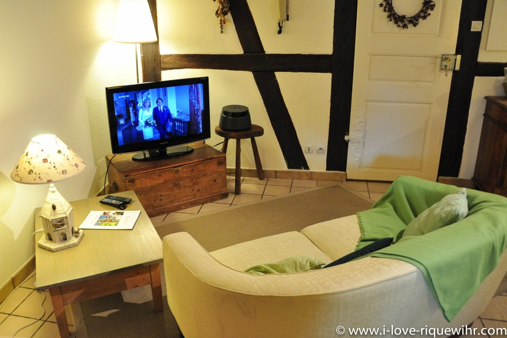 The sofa and TV place of Sylvaner, charming holiday apartment for 2 persons in Riquewihr Alsace in the Winemaker's house