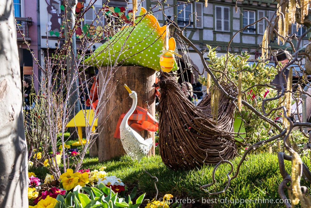 A nice floral and spring decoration is staged by the gardeners of the City of Colmar
