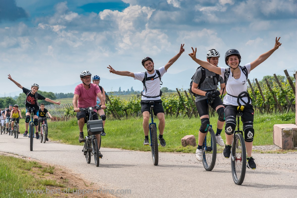 Enjoy the wine route without any cars! Just by bike, roller-blades or by foot!