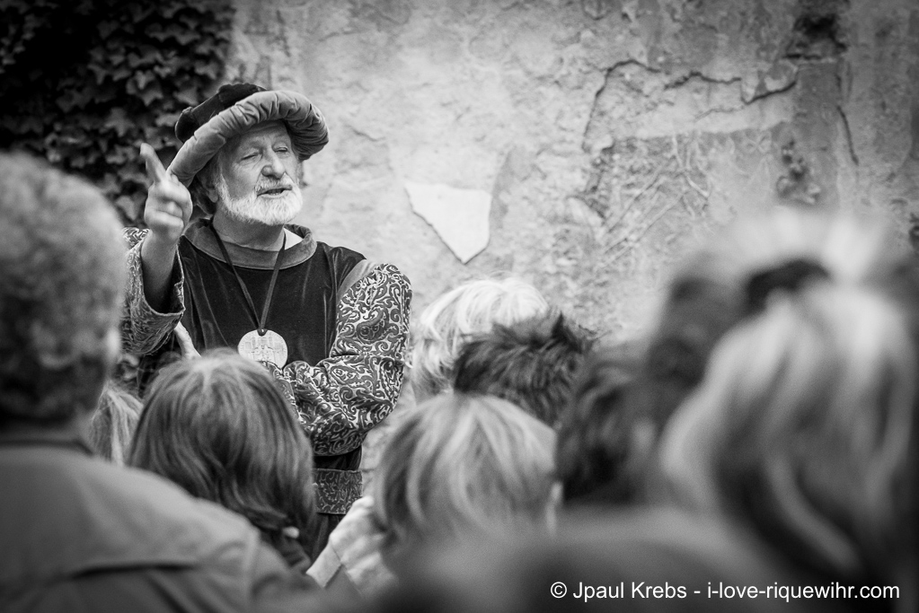 Daniel Ehret guide lecturer in Renaissance costume ...