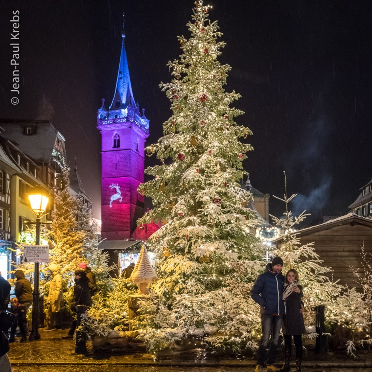The big tree at the Christmas market in Obernai, Alsace at the foot of Mont Saint-Odile.