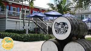 paradise island bahamas tours