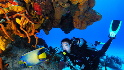 cozumel palace fun things to do scuba diving