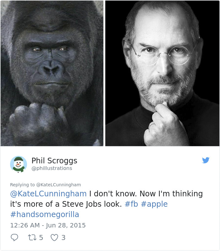 1514403496 752 people are comparing this ridiculously photogenic gorilla to george clooney and we cant handle it - People Are Comparing This Ridiculously Photogenic Gorilla To George Clooney And We Can't Handle It