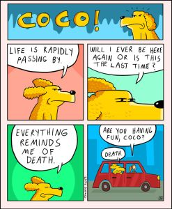 coco the dog ozan draws comics 6 5a38c8b4e5776 png  700 247x300 - 17 Hilariously Pessimistic Comics About Coco The Jolly Dog That Every Pessimist Will Relate To
