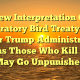 New Interpretation Of Migratory Bird Treaty Act Under Trump Administration Means Those Who Kill Birds May Go Unpunished