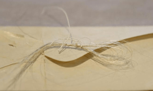 george washingtons hair discovered in 18th century book at new york college - George Washington's hair discovered in 18th-century book at New York college