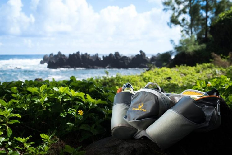 Best hiking water bottle laying in nature.