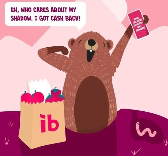 Honey vs Ibotta-Understanding IBOTTA- bvs Cash back applications saves customers' money