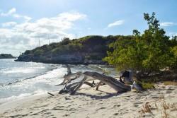 miramar-sailing-beach