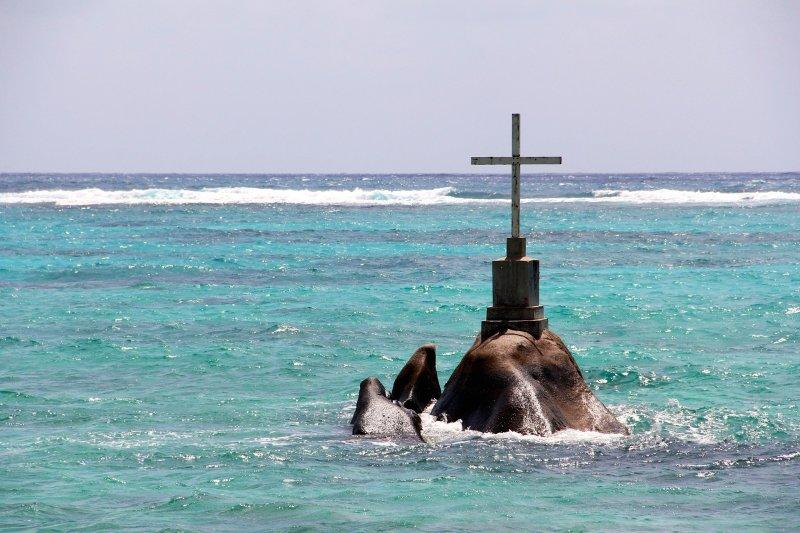 Unter Seebestattung versteht man die Bestattung des Leichnams oder der Asche eines Verstorbenen auf See. Wir arbeiten mit verschiedenen Reedereien zusammen, die weltweit Bestattungen auf See durchführen.