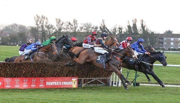 Ayr Racecourse Stats 1