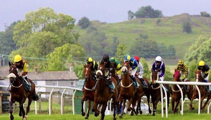 Cartmel Racecourse Stats 1