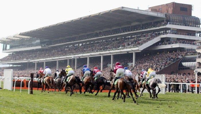 Cheltenham Racecourse Stats 1