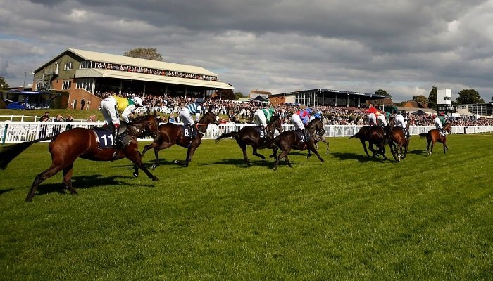 Hereford Racecourse Stats 1