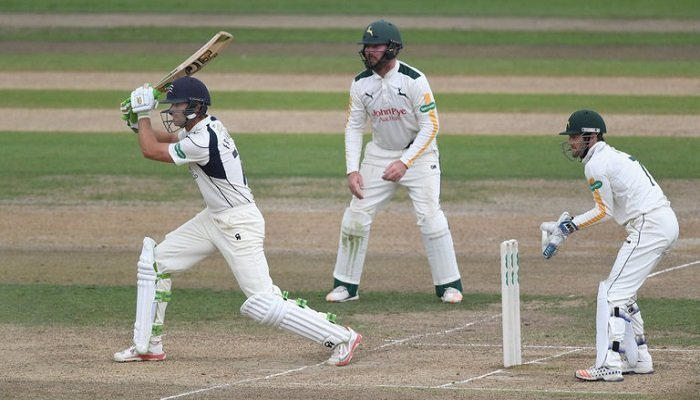 Latest Cricket Betting Opportunities 1