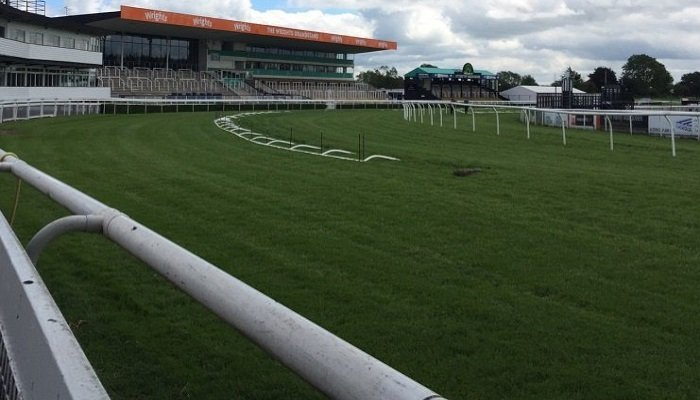 Uttoxeter Racecourse Stats 1