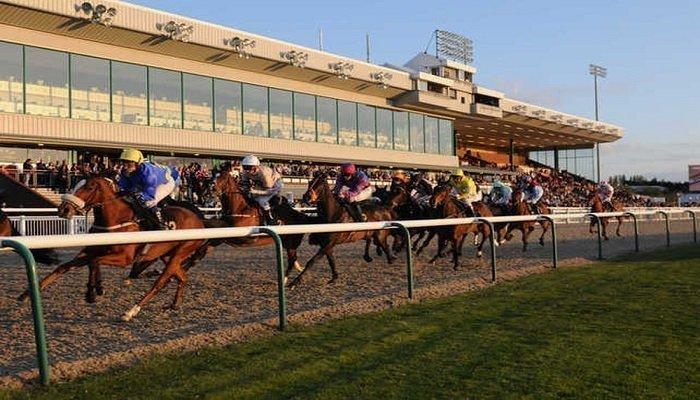 Wolverhampton Racecourse Stats 1