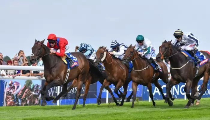 Best Odds for Day 4 at Goodwood 1