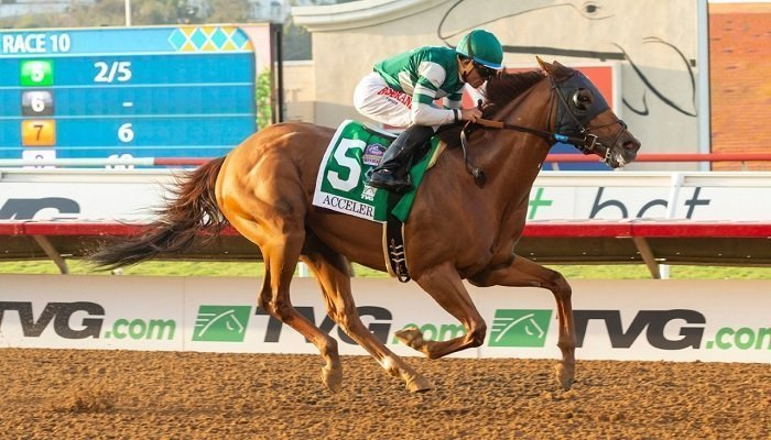 Accelerate Still the Favourite to Win the 2018 Breeders' Cup 1