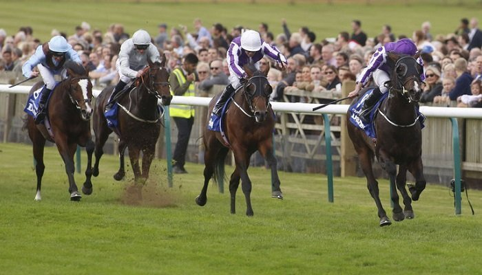 Ante Post Betting on the Dewhurst Stakes 1