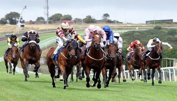 MintBet Free Bet of up to £250 on Winning Horse Race Accumulators 1