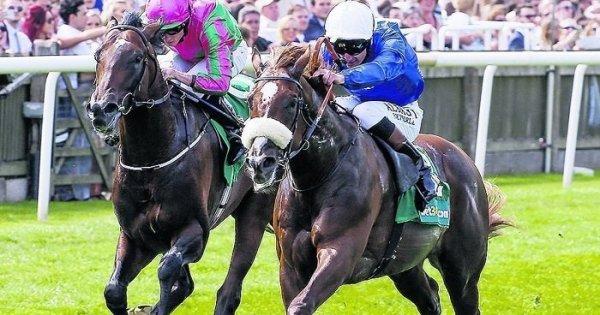 Ante post betting ladbrokes jobs best odds betting sites