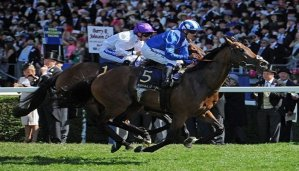 bet on the commonwealth cup