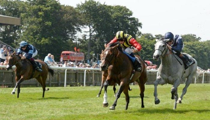 Falmouth Stakes
