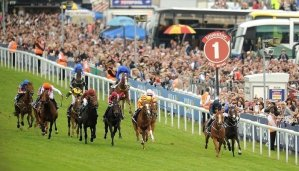 The Derby Stakes 5