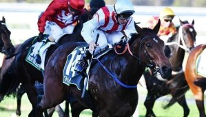 Ryan Moore Favourite to be the Royal Ascot Top Jockey 19