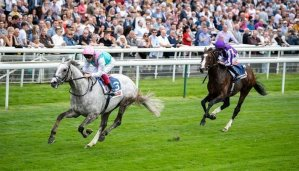 Betting on the 2019 St Leger 19