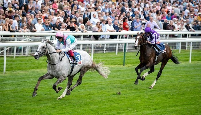 Betting on the 2019 St Leger 1