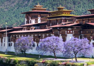 Khám phá văn hoá Bhutan 5N5Đ Thimphu-Punakha-Paro: bay thẳng từ HCM 28.04 – 02.05