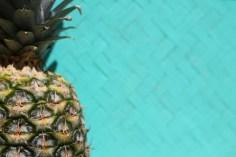 pineapple blog