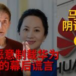 MH370 & Huawei truth