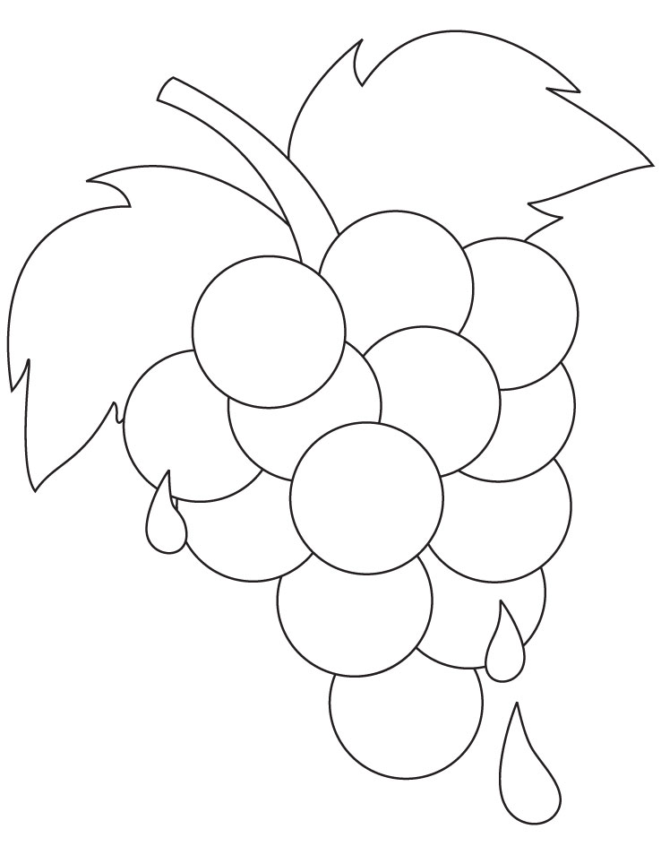 Fresh Ripe Grapes Coloring Pages Download Free Fresh