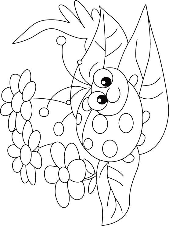 ¡demuestra todas tus habilidades y colorea los cuatro dibujos disponibles! Ladybug on Flower rug coloring pages | Download Free
