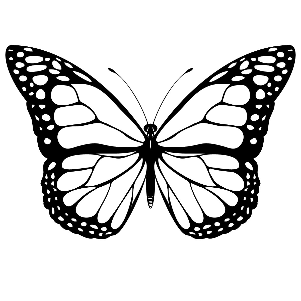 Butterfly Coloring Printable   Novocom.top