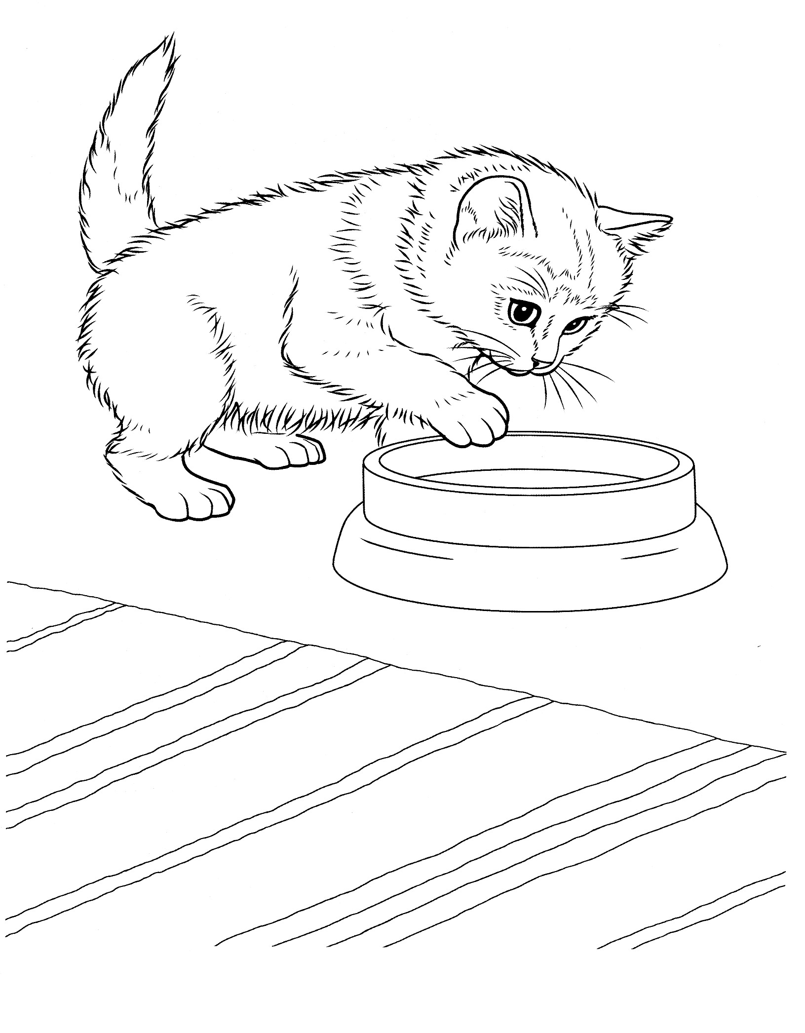 Free Printable Christmas Kitten Coloring Pages Novocom Top