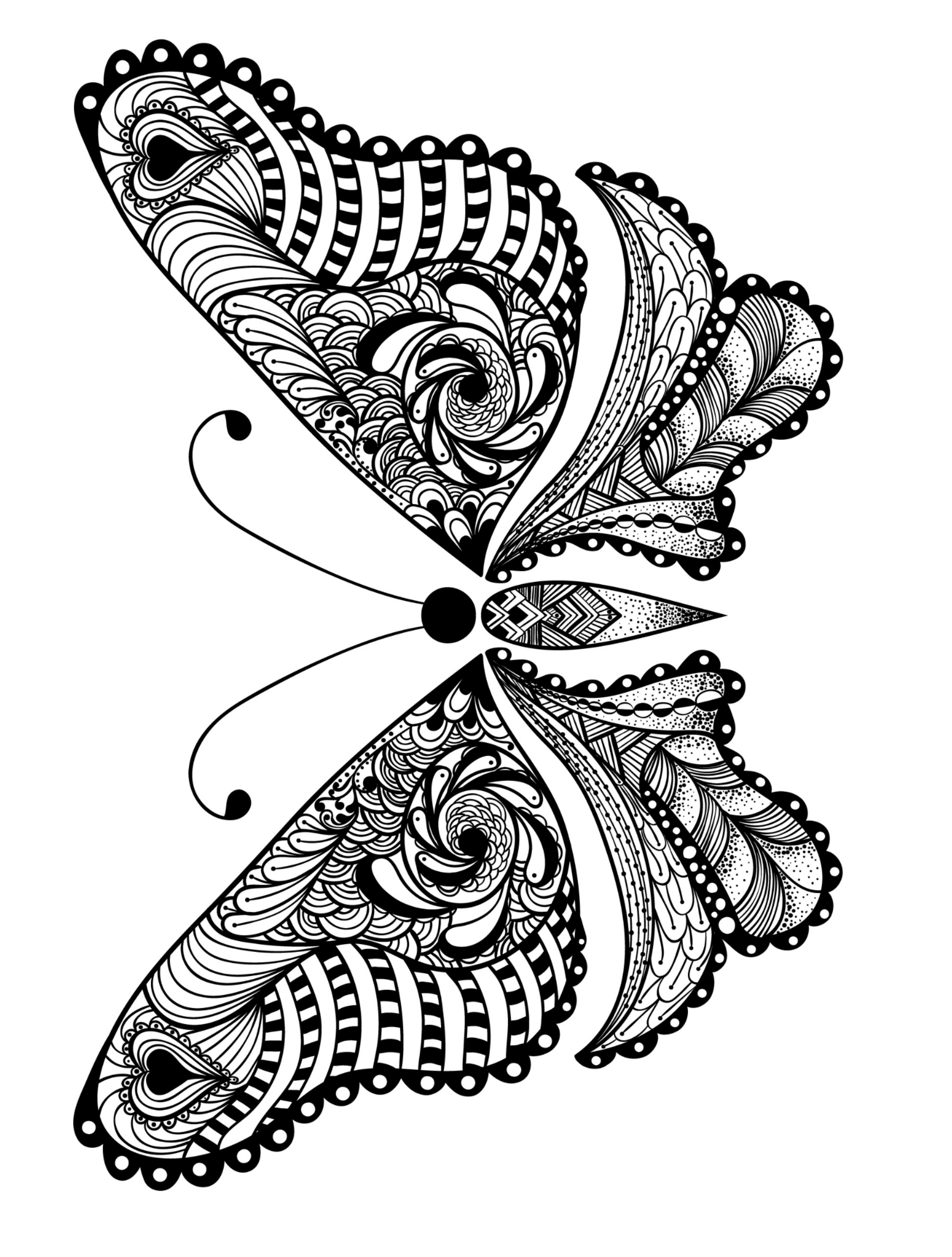 Butterfly Free Printable Coloring Pages Novocom Top